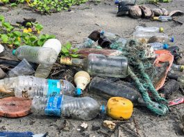 Play Your Part In Tackling The Plastic Bottle Crisis In The World