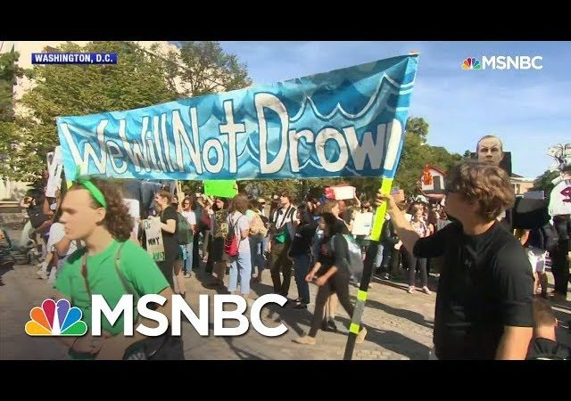 Day Of Climate Protests: 'There Is No Planet B' | MSNBC