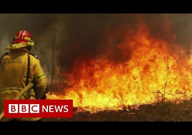 Australia fires: Preventing the spread – BBC News