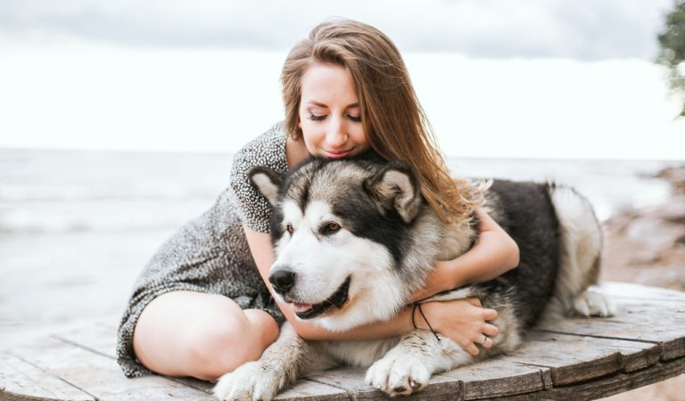 5 Easy Ways To Guarantee Your Dog Stays Healthy